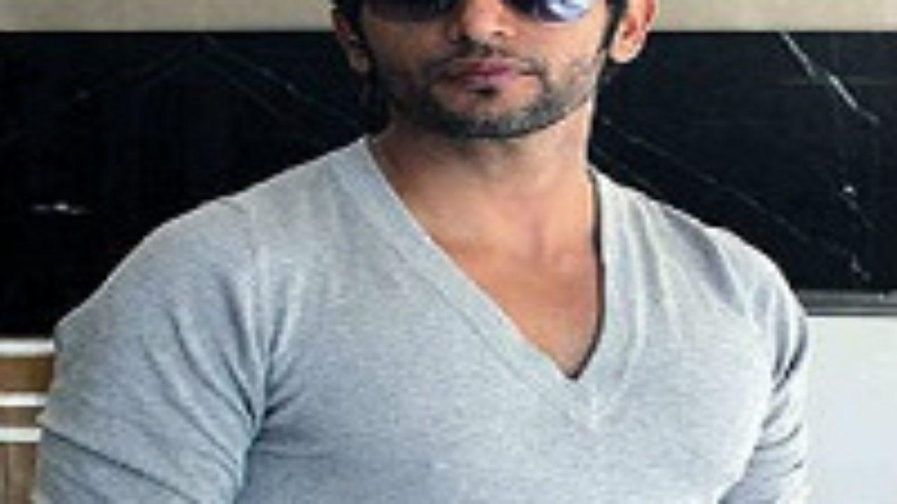 Karanvir Bohra (Bigg Boss 12) Wiki, Wife, Salary, Affairs