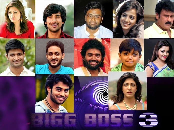 Bigg Boss Season 3 Contestants List Names
